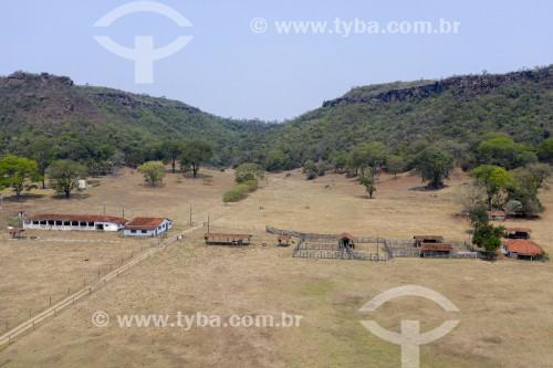 Foto feita com drone de fazenda de criação de gado em área de mata de cerrrado remanescente no interior do estado - Brotas - São Paulo (SP) - Brasil