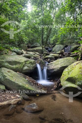 Piscina natural em rio na Floresta da Tijuca - Rio de Janeiro - Rio de Janeiro (RJ) - Brasil