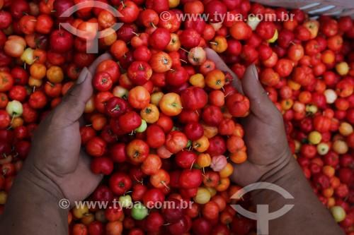 Venda de Acerola no Porto de Manaus - Manaus - Amazonas (AM) - Brasil