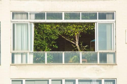 Árvore na janela de apartamento na Avenida Atlântica - Rio de Janeiro - Rio de Janeiro (RJ) - Brasil