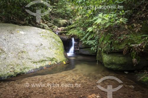 Riacho na Floresta da Tijuca - Rio de Janeiro - Rio de Janeiro (RJ) - Brasil