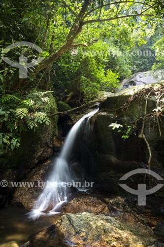 Cachoeira do Jequitibá - Parque Nacional da Tijuca - Rio de Janeiro - Rio de Janeiro (RJ) - Brasil