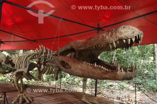 Museu da amazônia (MUSA) - Exposição permanente Passado presente - Esqueleto de um Purussauro (Jacaré de 13 metros de comprimento) - Manaus - Amazonas (AM) - Brasil