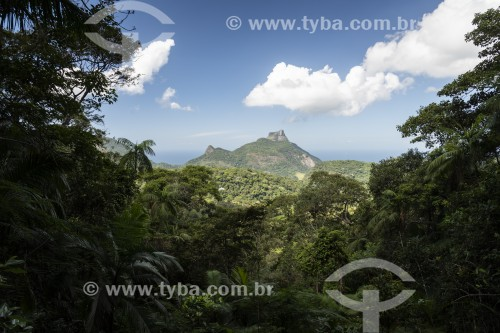 Vista da Pedra da Gávea à partir da Vista do Almirante - Parque Nacional da Tijuca  - Rio de Janeiro - Rio de Janeiro (RJ) - Brasil