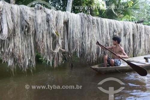 Ribeirinho olhando processo de secagem de malva durante a enchente do Rio Solimões  - Anamã - Amazonas (AM) - Brasil
