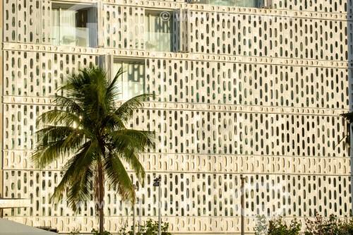 Palmeira e fachada do Hotel Emiliano - Rio de Janeiro - Rio de Janeiro (RJ) - Brasil