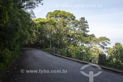 Estrada do Sumaré - Parque Nacional da Tijuca - Rio de Janeiro - Rio de Janeiro (RJ) - Brasil