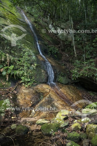 Cachoeira - Parque Nacional da Tijuca - Rio de Janeiro - Rio de Janeiro (RJ) - Brasil