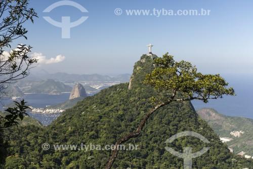 Vista do Cristo Redentor a partir do Mirante do Brócolis - Rio de Janeiro - Rio de Janeiro (RJ) - Brasil