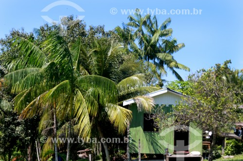 Moradia típica na Reserva de Desenvolvimento Sustentável Mamirauá - Uarini - Amazonas (AM) - Brasil