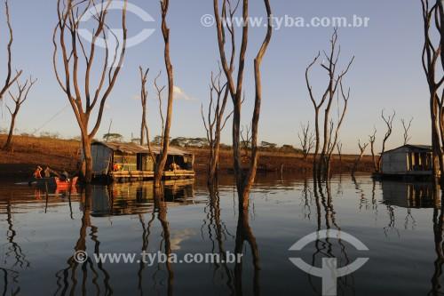Árvores que ficavam submersas no reservatório de água da Usina Hidrelétrica de Marimbondo com o nível de água mais baixo dos últimos 45 anos - entre os estados de São Paulo e Minas Gerais  - Icém - São Paulo (SP) - Brasil