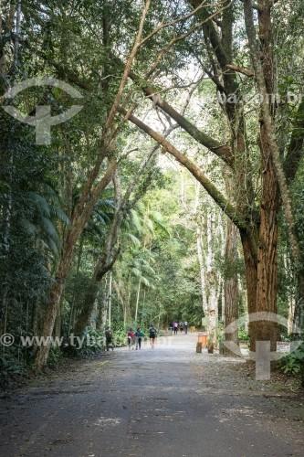 Turistas caminhando na Floresta da Tijuca - Parque Nacional da Tijuca - Rio de Janeiro - Rio de Janeiro (RJ) - Brasil