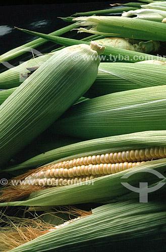 Detalhe de espigas de milho - Brasil