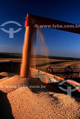 Colheita mecanizada de soja - PR - Brasil  - Paraná - Brasil