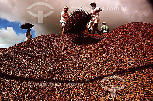 Homens fazendo o carregamento manual de castanha do Pará para exportação - Rio Branco - AC - Brasil / Data: 2004