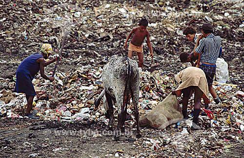Lixão - Aterro Sanitário - Pessoas catando lixo junto com animais e crianças - São Gonçalo  - RJ - BrasilData: 2000