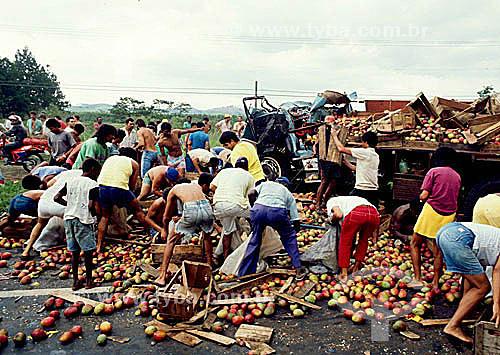 Pessoas saqueando frutas em acidente com caminhão