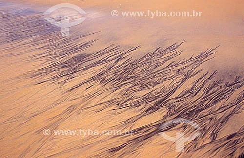 Efeito visual: areia  - Caraíva - BA - Brasil  - Porto Seguro - Bahia - Brasil