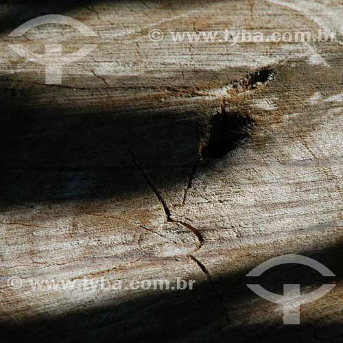 Tábua de madeira - Textura