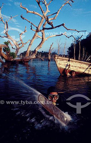 Ambiental - Mergulhador com serra elétrica na água - inundação da construção da Hidrelétrica Tucuruí - PA - Brasil  - Tucuruí - Pará - Brasil