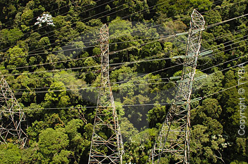 Linhas de transmissão de energia elétrica - torres de transmissão - cabos de alta tensão - Mata Atlântica - Rio de Janeiro - RJ - Brasil  - Cabo Frio - Rio de Janeiro - Brasil