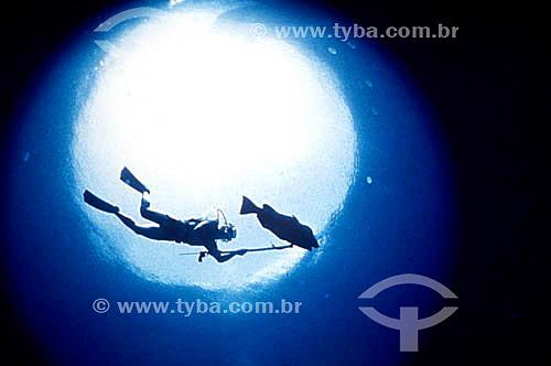 Silhueta de mergulhador e peixe no fundo do mar