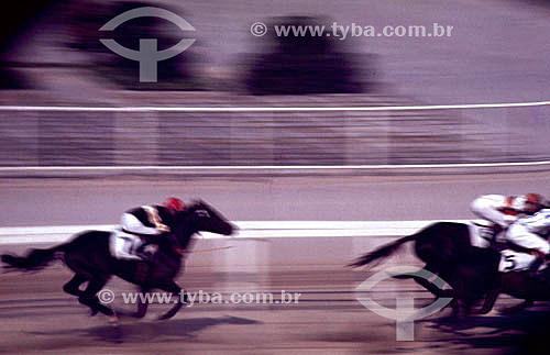 Esporte - Corrida de cavalo - Turfe - Apostas