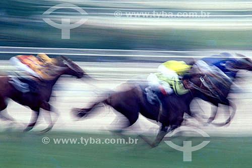 Hipismo: Jóquei, corrida de cavalos  - Rio de Janeiro - Rio de Janeiro
