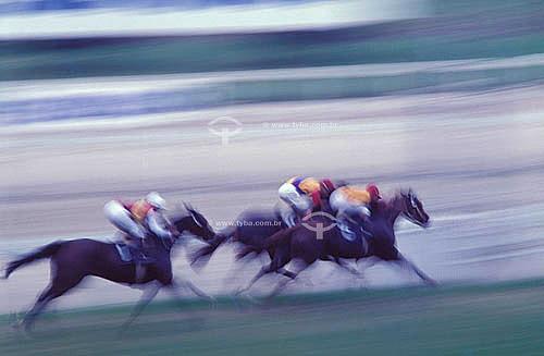 Corrida de Cavalos - Hipismo - Jockey Clube do Rio de Janeiro - Hipódromo da Gávea, do Jockey Club Brasileiro - Rio de Janeiro - RJ - Brasil  - Rio de Janeiro - Rio de Janeiro - Brasil