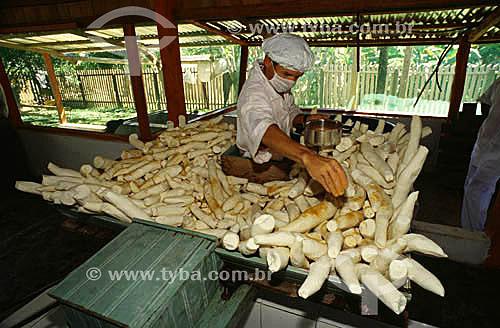 Preparação da farinha de mandioca em área rural - município de Cruzeiro do Sul - Acre - maio de 2001  - Cruzeiro do Sul - Acre - Brasil