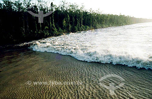 Pororoca no Rio Araguarí - AP - Brasil / Data: 2008