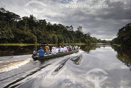 Turistas passeando no Rio Ariaú - AM - Brasil  - Amazonas - Brasil