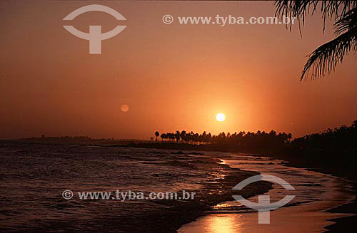 Pôr-do-sol na praia de Itapoa com coqueiros ao fundo - Salvador - Bahia - Brasil  - Salvador - Bahia - Brasil