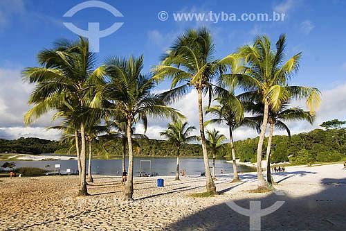 Parque Metropolitano da Lagoa e Dunas do Abaeté - BA - Brasil  - Salvador - Bahia - Brasil