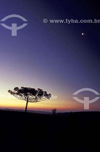 Anoitecer na Serra da Boa Vista - Rancho Queimado - Santa Catarina - Brasil - Maio de 2005  - Rancho Queimado - Santa Catarina - Brasil