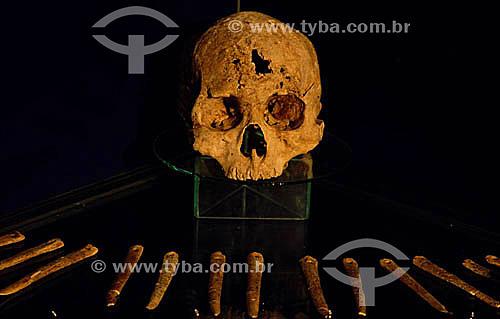 Caveira e ossos - Canindé do São Francisco - Museu de Arqueologia de Xingó - Sergipe - Brasil  - Canindé de São Francisco - Sergipe - Brasil
