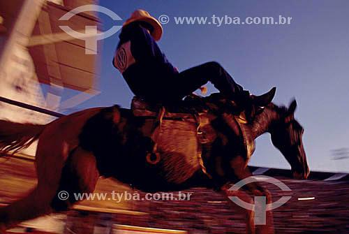Vaqueiro montado no cavalo na Festa do Peão Boiadeiro - Barretos - SP - Brasil - Rodeio - Barretos - SP - Brasil  - Barretos - São Paulo - Brasil