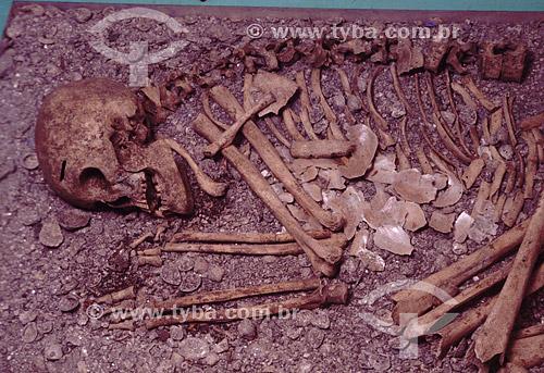 Esqueleto no Museu do Sambaqui -Joinville - Santa Catarina - Brasil  / Data: 2008
