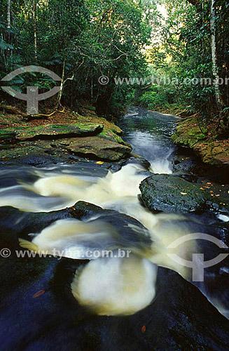 Cachoeira Guariba, no igarapé Preto - Parque Nacional do Jaú  - AM / (julho de 2001)  - Jaú - Amazonas - Brasil