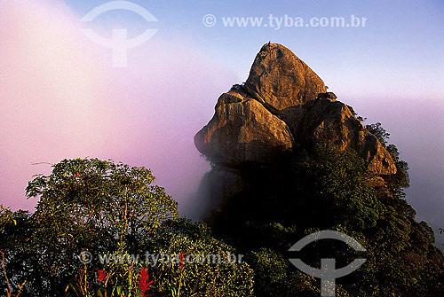 Neblina no Bico do Papagaio no Parque Nacional da Tijuca  - Rio de Janeiro - Rio de Janeiro (RJ) - Brasil