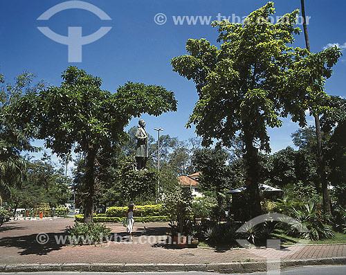Figueira e Abricó de Macaco na Fonte da Saudade - Rio de Janeiro - RJ - Brasil  - Rio de Janeiro - Rio de Janeiro - Brasil
