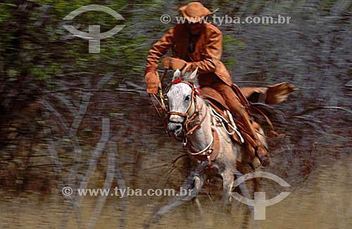 Sertanejo - vaqueiro andando à cavalo com roupa de couro - Caatinga - Brasil / Data: 1995