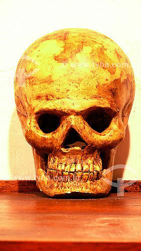 Crânio humano no Museu Antropológico e Histórico de Cartagena - Colômbia