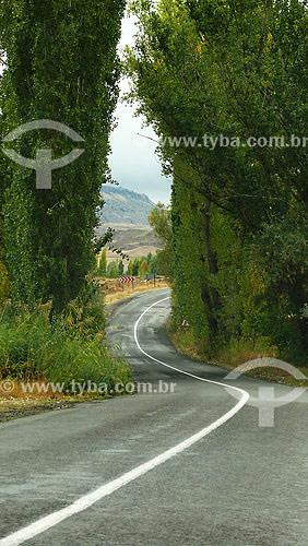 Estrada - Capadócia - Turquia - Outubro de 2007