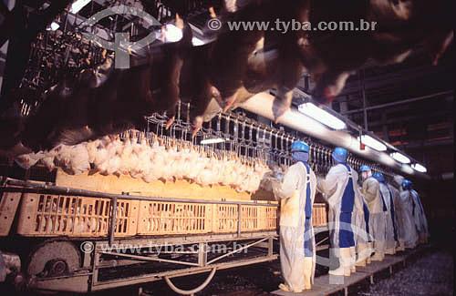 Agro-Indústria (Agro Indústria) - Avicultura / frangos: trabalhador em frigorífico - Sadia - Concórdia - SC - Brasil - data: 2002  - Concórdia - Santa Catarina - Brasil