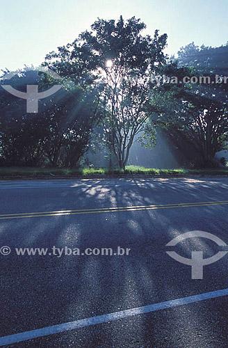 Rodovia ou estrada Rio-Santos  BR 101