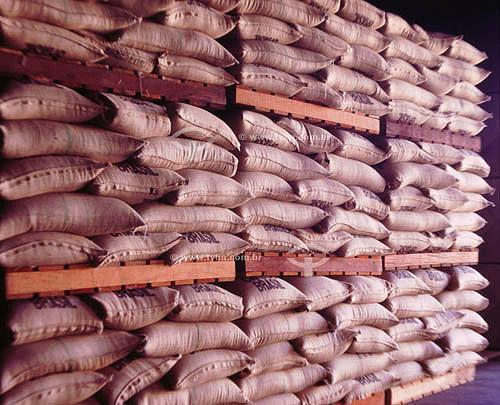 Sacos de café para exportação em armazém - Vitória - ES - Brasil  - Vitória - Espírito Santo - Brasil