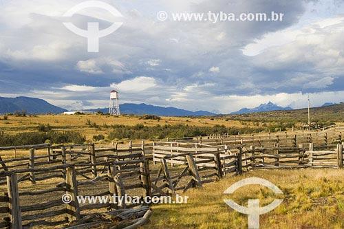 Assunto: Cercas de madeira da Estancia Alice em Ele CalafateLocal: Santa Cruz, Patagônia País: ArgentinaData: 15/01/2007