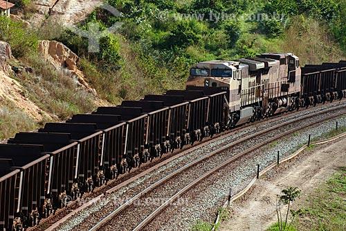 Assunto: Trem da companhia Vale do Rio Doce transportando ferro / Local: Estrada de Ferro Carajás - PA / Data: 08/2008