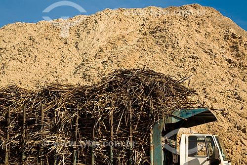 Transporte de cana-de-açúcar dos campos ao moínho para produção de etanol e açúcar  - Cosmópolis - São Paulo (SP) - Brasil
